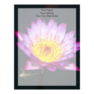 Purple & Yellow Lotus with Dragonfly Nymph Letterhead