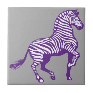 Purple Zebra on Gray Background Tile
