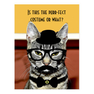 Purr-fect Cat Costume Postcard