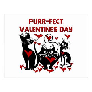 Purr-fect Valentines Day Postcard