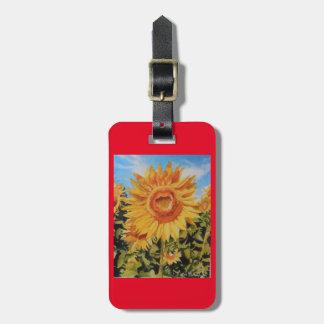 purse or luggage tag or key chain accessory