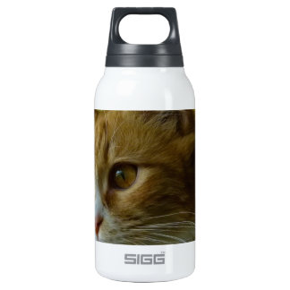 pussy cat insulated water bottle