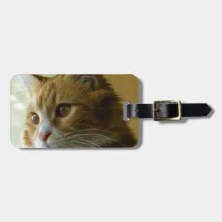 pussy cat luggage tag