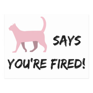Pussy cat says you're fired! Postcard