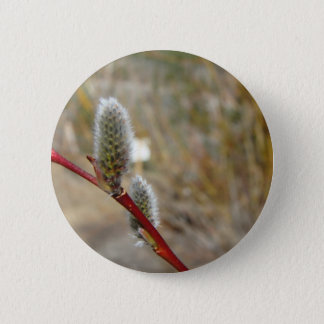 Pussy Willow 2 Inch Round Button
