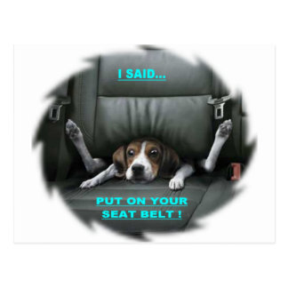 PUT ON YOUR SEAT BELT POSTCARD