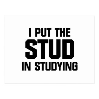 Put the Stud in Studying Postcard