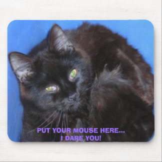 PUT YOUR MOUSE HERE...I DARE YOU! CHOCOLATE CAT MOUSE PAD