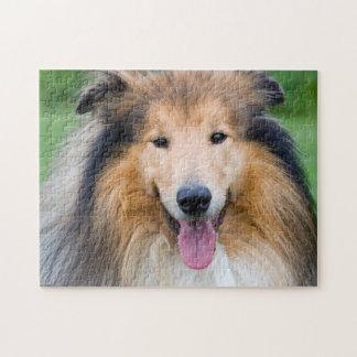 Puzzle, 28 cm X 35.5 cm (252 parts): dog Collie Jigsaw Puzzle