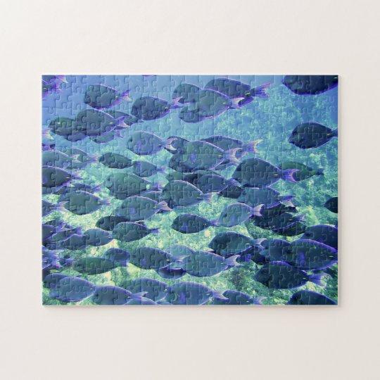Puzzle Blue Fish