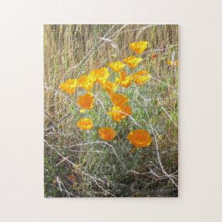 Puzzle - California Poppy