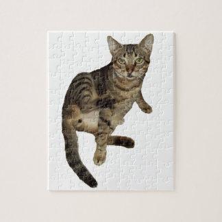 Puzzle Charming Cat