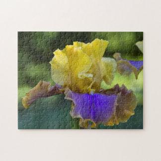 Puzzle d'iris pourpre et jaune