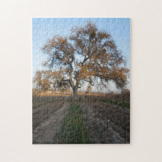 Puzzle: Oak inVineyard with Mistletoe Jigsaw Puzzle