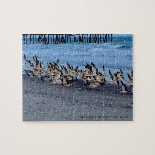 Puzzle with picture of birds, black skimmers