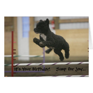 PWD agility jump birthday card