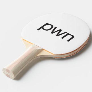 pwn Ping-Pong paddle