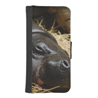 Pygmy Hippo iPhone 5 Wallet Case