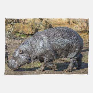 Pygmy hippo kitchen towel