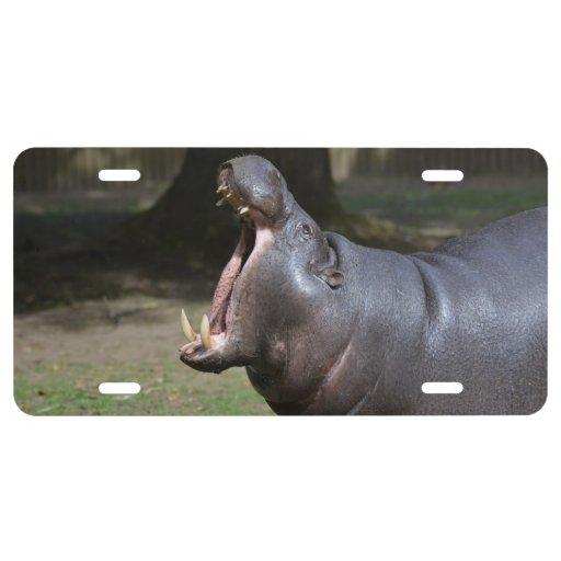 Pygmy Hippo License Plate
