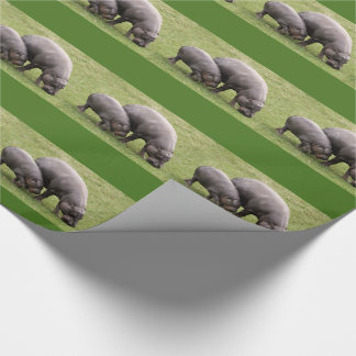 Pygmy Hippos Wrapping Paper