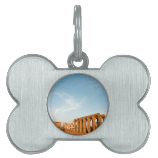 Pylon and Colonnade, Luxor Temple Pet ID Tags