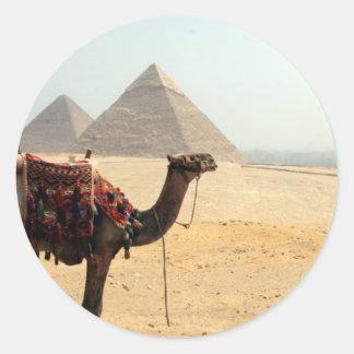 pyramid camel round sticker