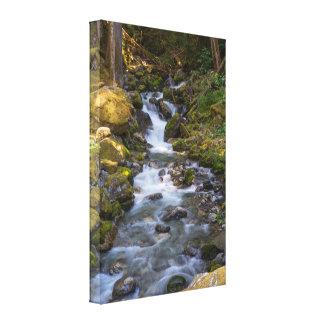 Pyramid Creek Canvas Print