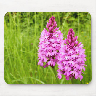Pyramidal Orchid Mouse Mat