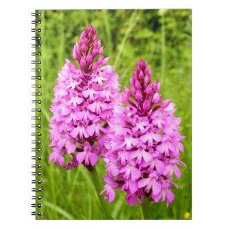 Pyramidal Orchid Spiral Photo Notebook