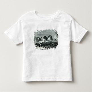 Pyramids of Meroe, on the Nile T Shirt