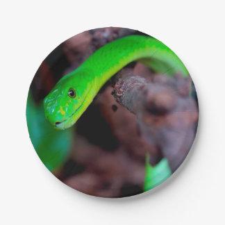 Python Snake 7 Inch Paper Plate