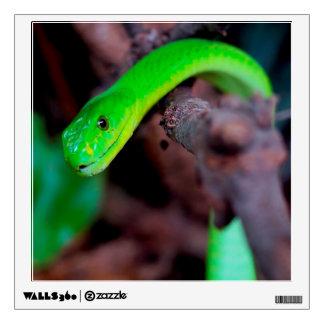 Python Snake Wall Decal