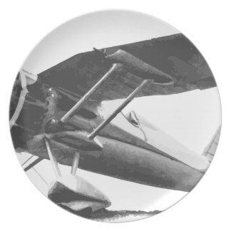 PZL24_prototyp Plate