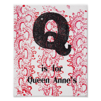 Q is for Queen Anne's Lace Poster