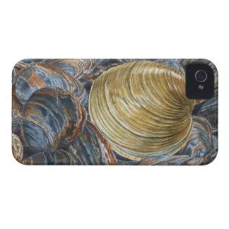 Quahog and Clams iPhone 4 Cases