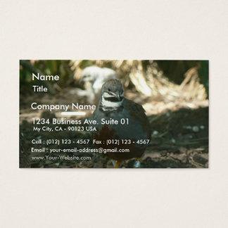 Quail Business Card