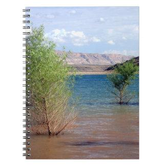 Quail Creek Notebook