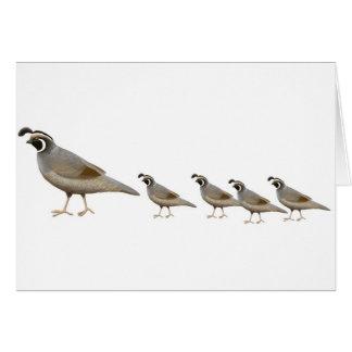 Quail Family Greeting Card