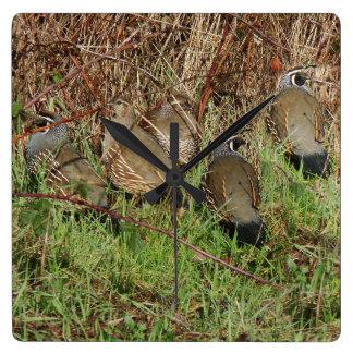 Quail Grouse Birds Wildlife Animals Clock