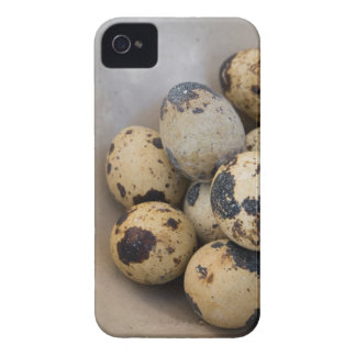 Quails eggs Case-Mate iPhone 4 cases