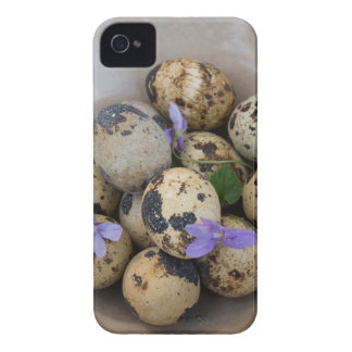Quails eggs & flowers 7533 iPhone 4 case