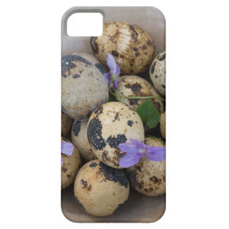 Quails eggs & flowers 7533 iPhone 5 cases