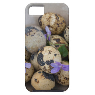 Quails eggs & flowers 7533 iPhone 5 covers