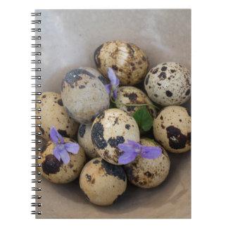 Quails eggs & flowers 7533 notebook