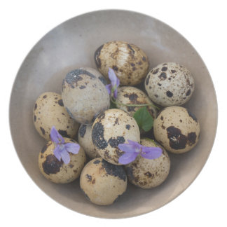 Quails eggs & flowers 7533 plate