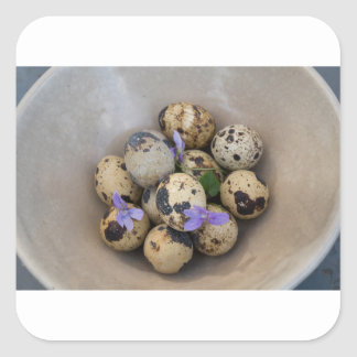 Quails eggs & flowers 7533 square sticker