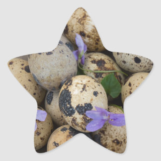 Quails eggs & flowers 7533 star sticker