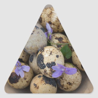 Quails eggs & flowers 7533 triangle sticker