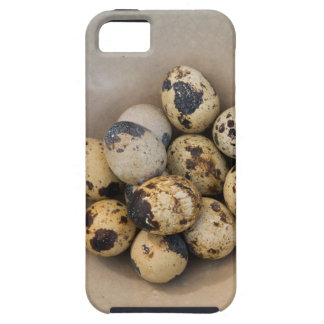 Quails eggs in a bowl case for the iPhone 5